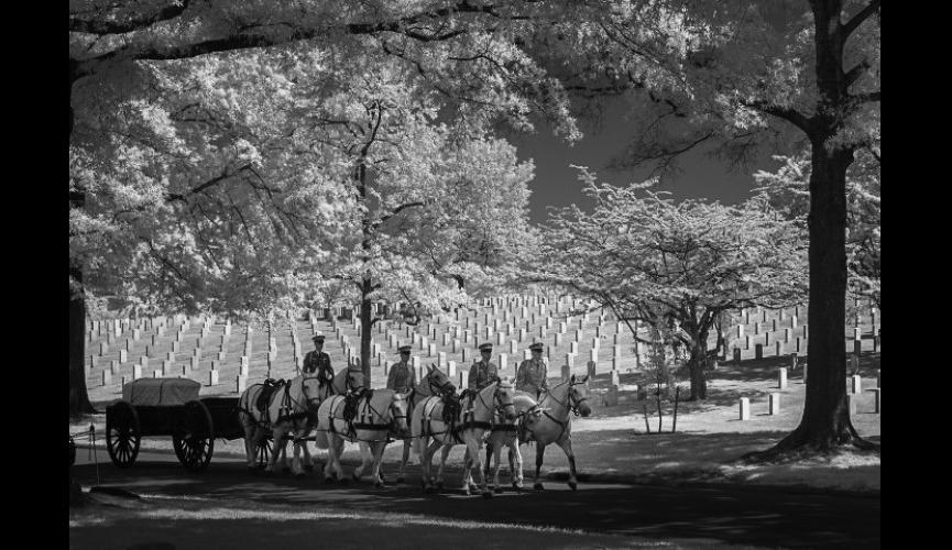 Arlington National Cemetery photographed with infrared light