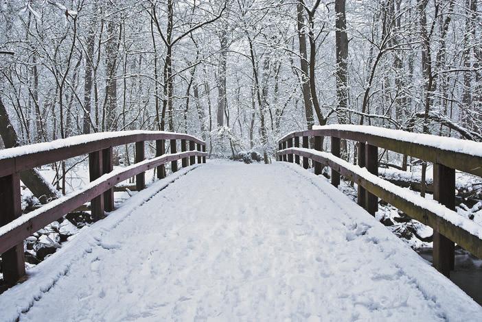 Rock Creek Park in winter.