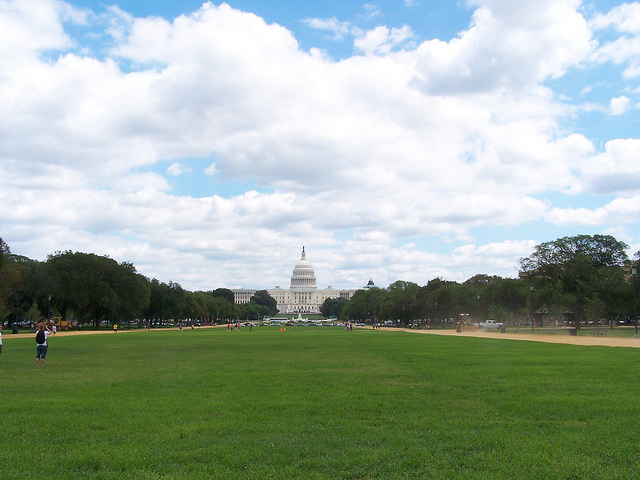 The National Mall in August.