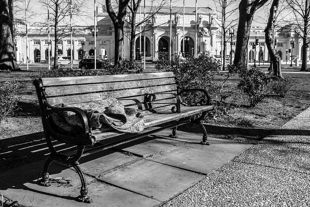 Blanket on bench in Washington, D.C.